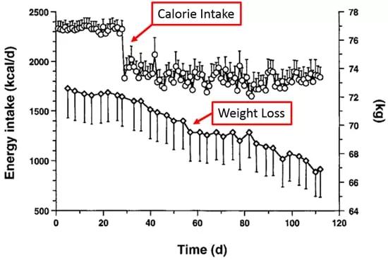 Diet - Calories