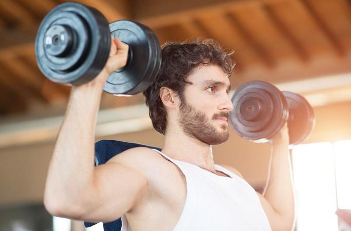 Creatin und Muskeln