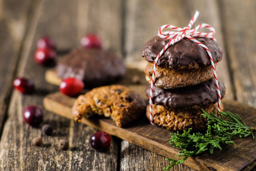 Biscuit Protéiné Pain d'Épices