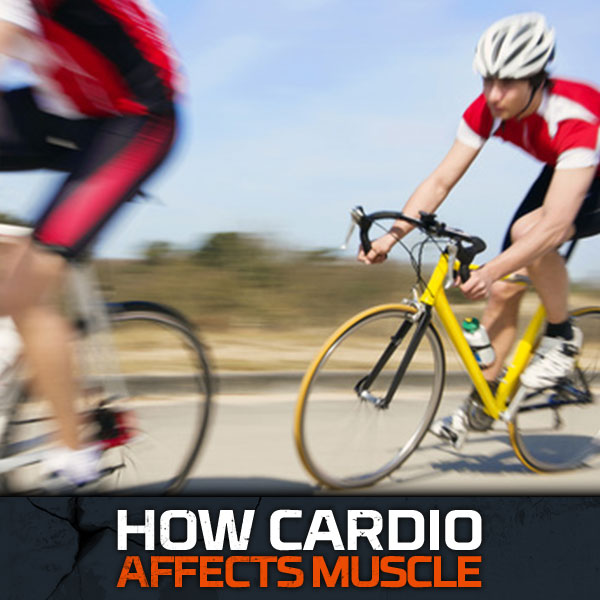 How Cardio Affects Muscle